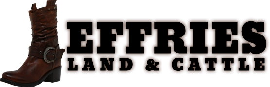 Jeffries Land & Cattle Company